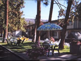 Photo of the Beachside Motel motel