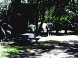 Photo of the Dutch's Campground