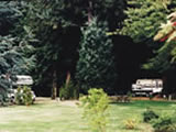 Photo of the Wilson Creek Campground camping