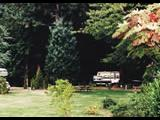 Photo of the Wilson Creek Campground