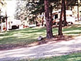 Photo of the Heritage Campsite & RV Park at Monte Lake camping