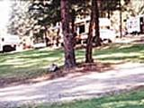 Photo of the Heritage Campsite & RV Park at Monte Lake