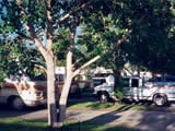 Photo of the Sintich RV Park camping