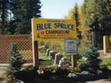 Photo of the Blue Spruce RV Park & Campground camping