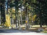 Photo of the Blue Spruce RV Park & Campground