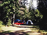 Photo of the Cedars Campground and RV Park camping