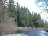 Photo of the Quatse River Campground camping