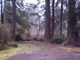 Photo of the Quatse River Campground