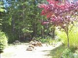 Photo of the Port Renfrew Recreational Retreat
