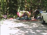 Photo of the Paradise Valley Campground