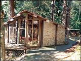 Photo of the Sequoia Seminar camping