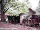 Photo of the Asheville Cozy Cabins camping