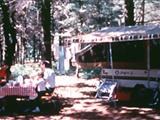Photo of the White Pine State Forest Canoe Camp camping