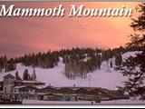 Photo of the Mammoth Mountain Chalets camping