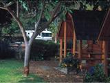 Photo of the San Diego Metropolitan KOA