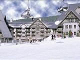 Photo of the Chalet Des Amis Accomodations Limited