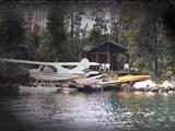 Photo of the The Dean on Nimpo