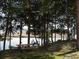 Photo of the Living Forest Oceanside RV Park & Campground