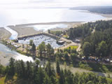 Photo of the Pacific Playground Resort & Marina  camping
