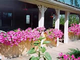 Photo of the Buckhorn Bed & Breakfast  bed & breakfast