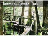 Photo of the Highlands Hammock SP camping