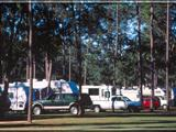 Photo of the Milton / Gulf Pines KOA motel