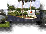 Photo of the Southern Palms RV Resort