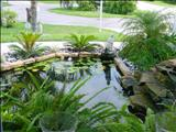 Photo of the Tropical Paradise Bed & Breakfast motel
