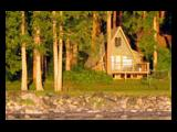 Photo of the Taku Resort camping