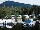 Photo of the Water Lily Bay Resort camping