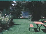 Photo of the Riviera RV Park & Campground camping