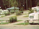 Photo of the Tynehead RV Campground