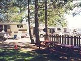 Photo of the Sea-esta Campground