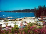 Photo of the Alder Bay Resort camping