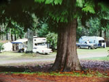 Photo of the Campers Corner RV Park camping
