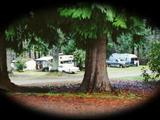 Photo of the Campers Corner RV Park