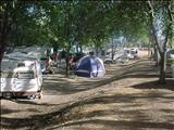 Photo of the Wright's Beach Camp RV Park