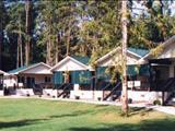 Photo of the Scotch Creek Cottages
