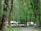 Photo of the Fort Langley Camping