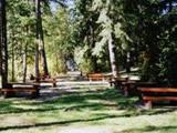 Photo of the Syringa Provincial Park (West Kootenay Park Management Inc.) camping