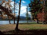 Photo of the Lakelse Lake Provincial Park - Furlong Bay