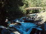 Photo of the Little Qualicum Falls Provincial Park