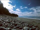 Photo of the French Beach Provincial Park