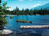 Photo of the Alice Lake Provincial Park