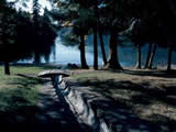 Photo of the Cultus Lake Provincial Park - Entrance Bay campground