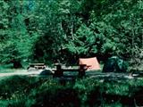 Photo of the Cultus Lake Provincial Park - Honeymoon Bay campground