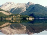 Photo of the Wapiti Lake Provincial Park camping