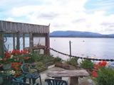 Photo of the Seasmoke Sea Orca Whale Watching & Lodging bed & breakfast