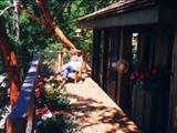 Photo of the Orca View Cottage
