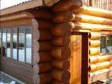 Mara House Guest Cabin